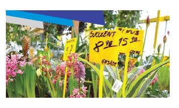 Porta Preço Plantas